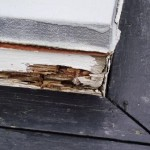 Wood Rot Repair