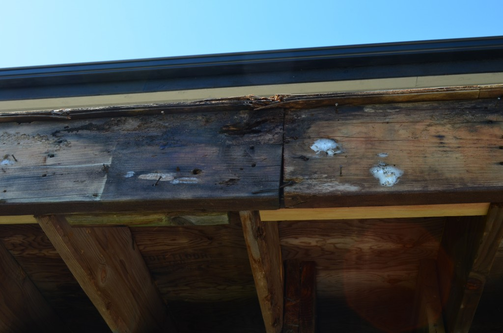 Rot Repair in North Vancouver